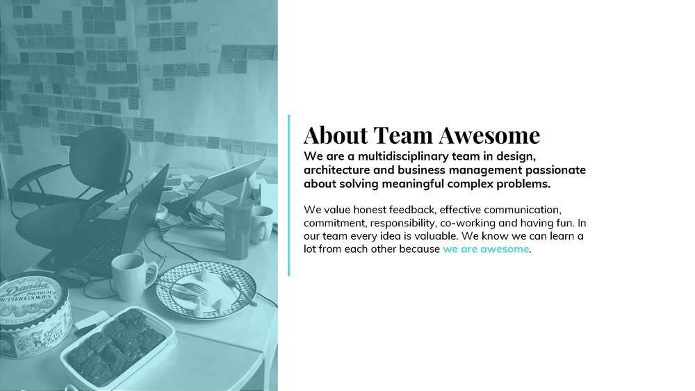 Team Awesome Midterm Booklet_Page_03.jpg