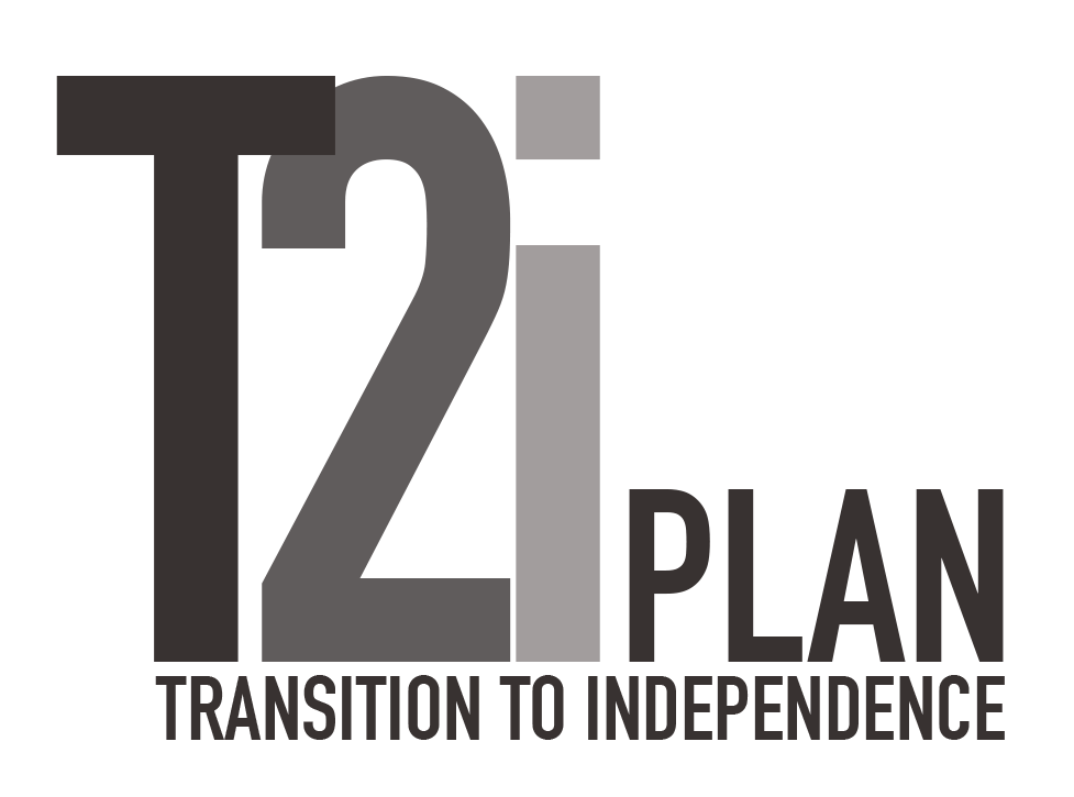 The T2I Plan