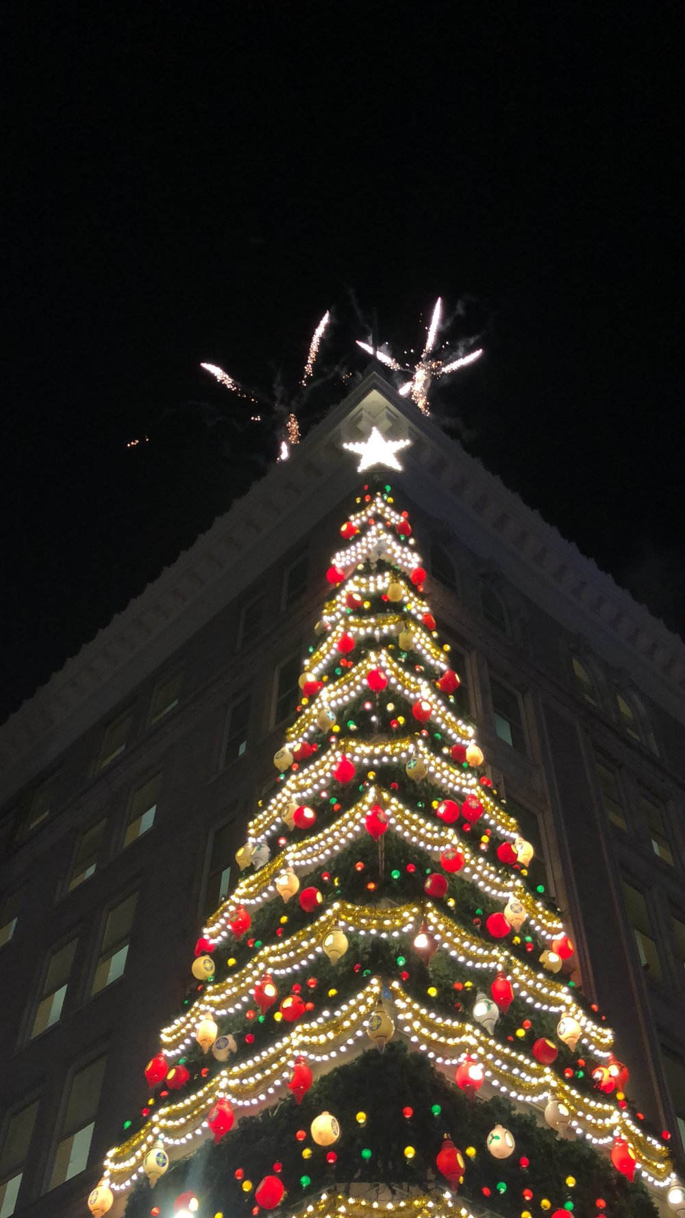 Highmark tree.JPG