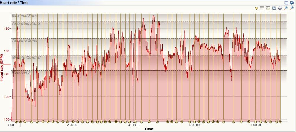 Heart rate over time: not too bad for my standards.   Picture: Life-Sparring.com via Sporttracks 3.0