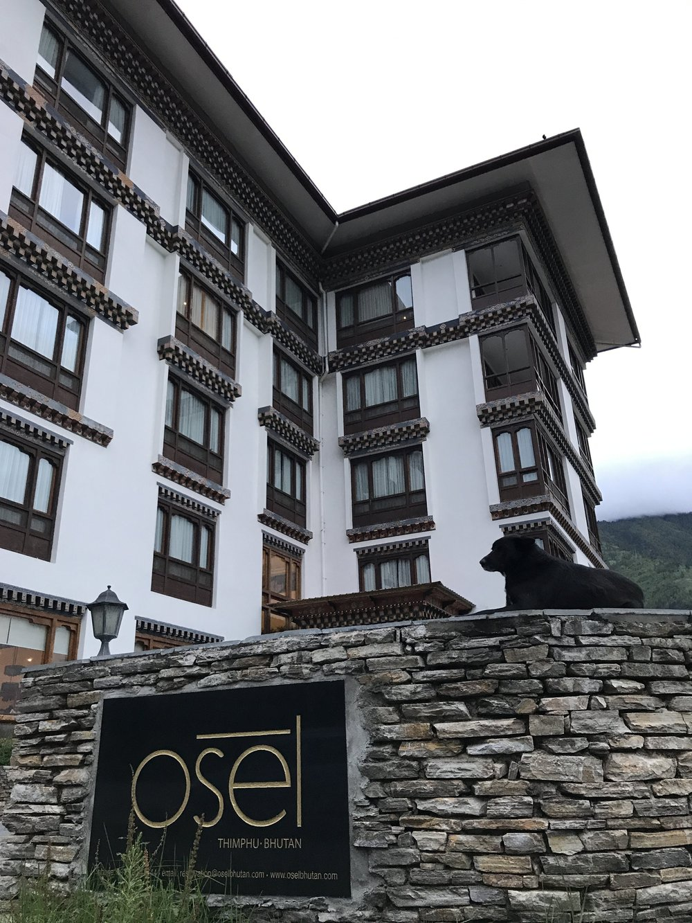 Osel Hotel - Not a bad choice in Thimphu