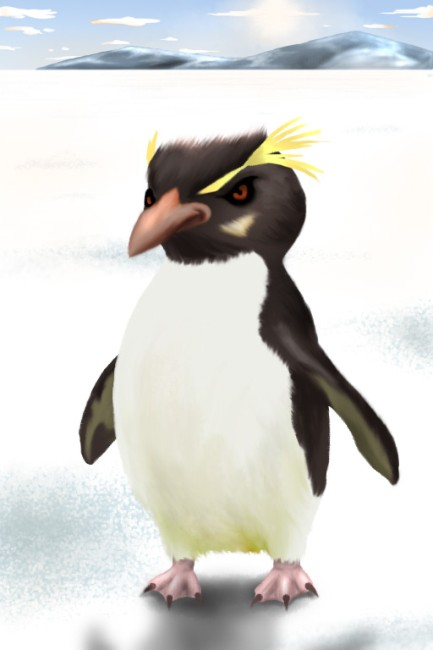RockhopperPenguin.jpg