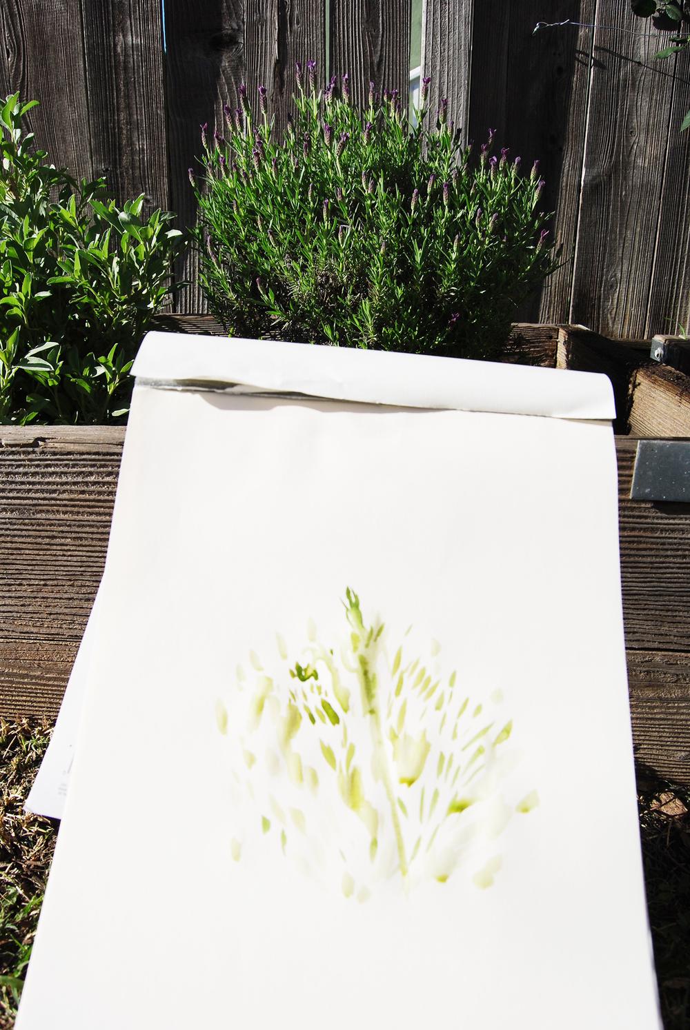 garden_painting_8.jpg