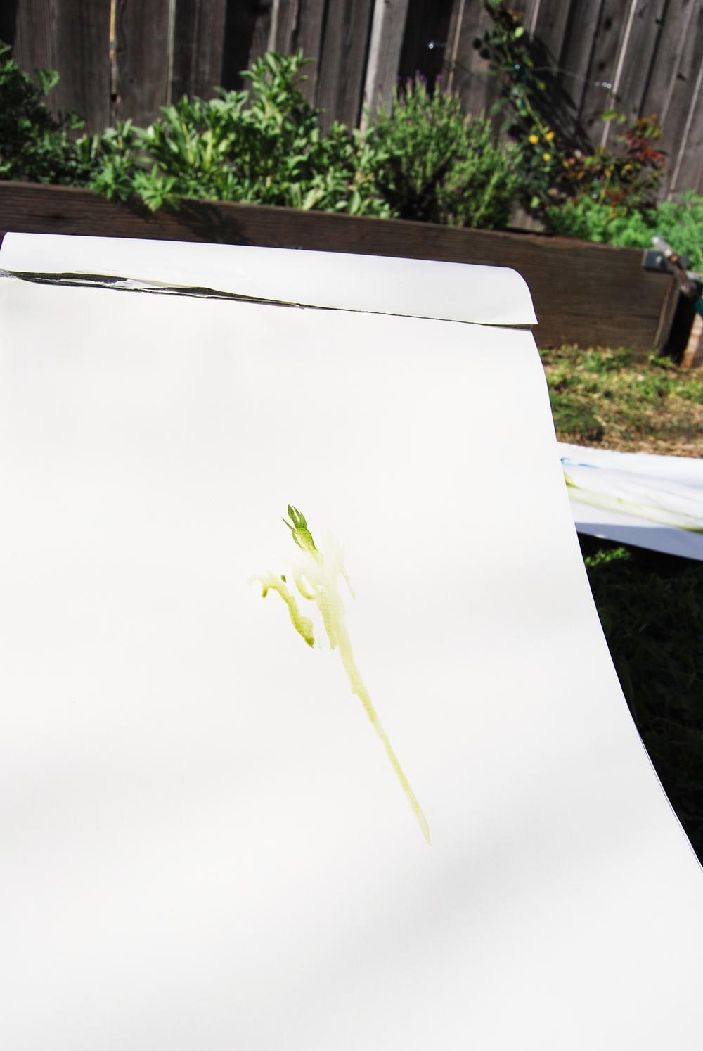 garden_painting_11.jpg