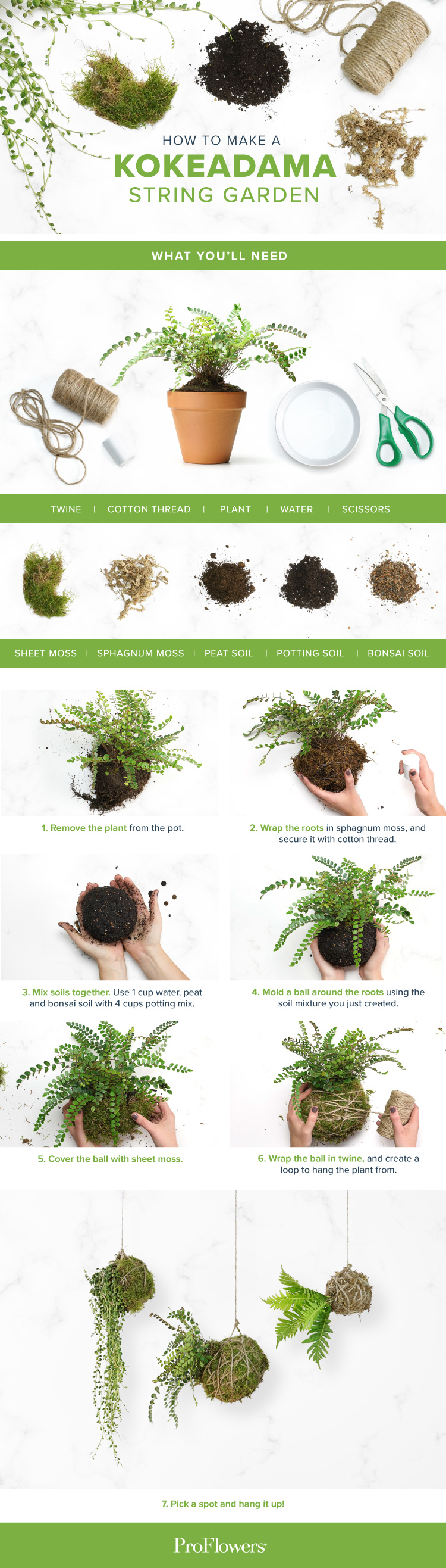 DIY-kokedama-string-garden-sharable.jpg