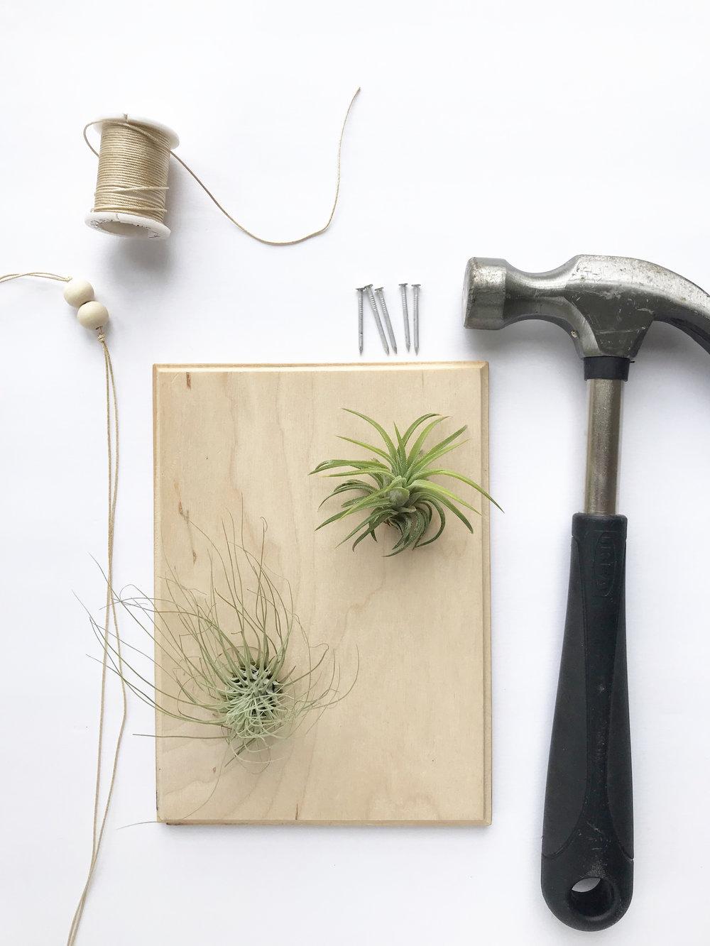 string_art_supplies.jpg