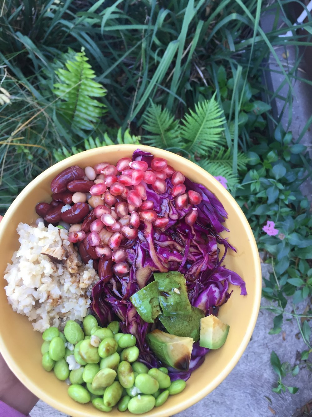 Vegetarian nourish bowl, with legumes for protein.