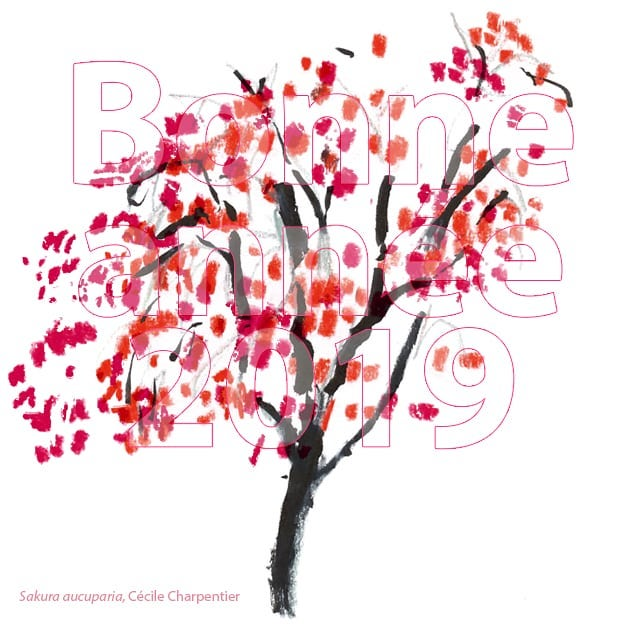 Bonne année 2019 #sakura #sorbierdesoiseleurs #tuttifrutti