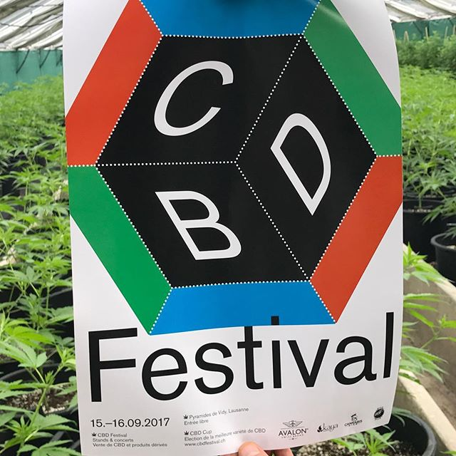 @CBD_festival this Friday & Saturday in #Lausanne and our friends from @kushsdream are on board! #KushsWidow! Best #CBD flowers we have smoked in Switzerland! 🇨🇭 #cbdfestival #cbd  #kushsdream #cbdadvisor #switzerland #cbdswitzerland  GET YOUR WEED CLUB MEMBER CARD FOR BARCELONA HERE!  Drop us a DM or find out more in our bio!  #weedadvisor #weedtour #weedclub  THE GREEN GENTLEMEN present HIGH OF LIFE ----------- Tag your pictures with #HIGHOFLIFE to get a chance to be featured. ----------- 👉 Follow: @2high4yall 👉 Tag: #highoflife ----------- #weed #herb #educatwyourself #marijuana #marihuanalifestyle #2high4yall #highman #highlife #medicalmarijuana #weedlife #marijuanamovement #legalizeit #marijuanaclub #territoryofthegreengentlemen  #thegreengentlewomen #theweedway ----------- ❕ Facebook: High of Life❕