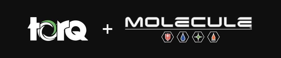 molecule-motorsports.jpg