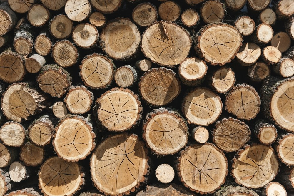 forestry wood sustainability