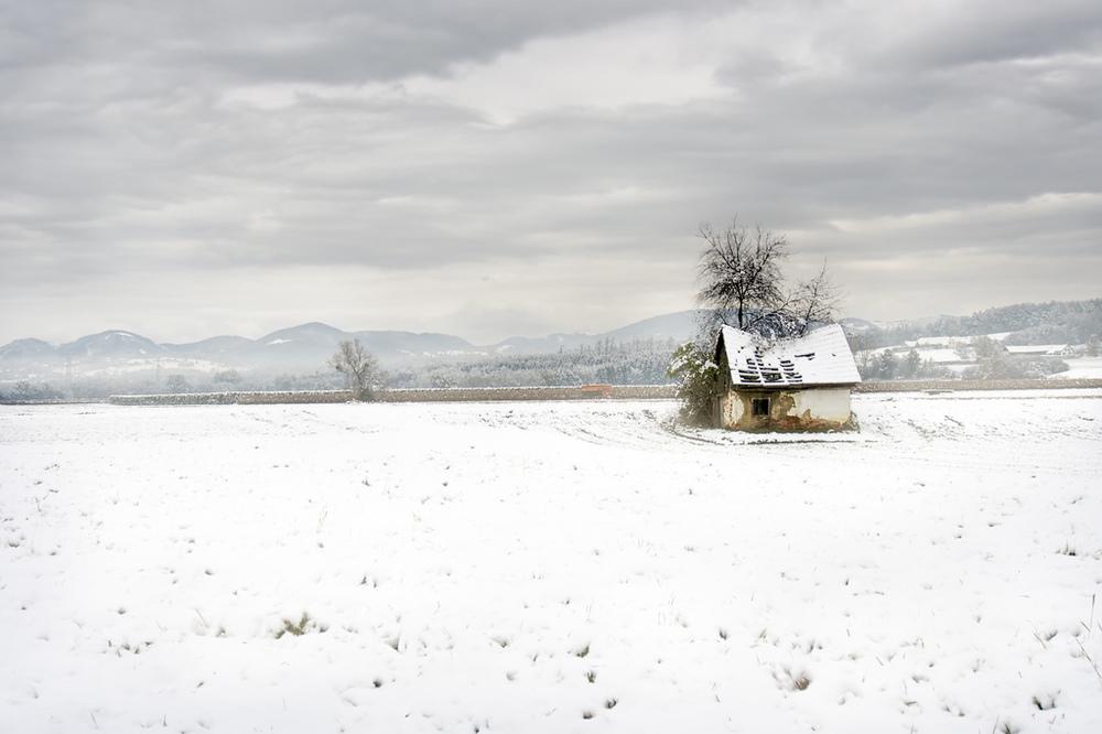 wintershot 2
