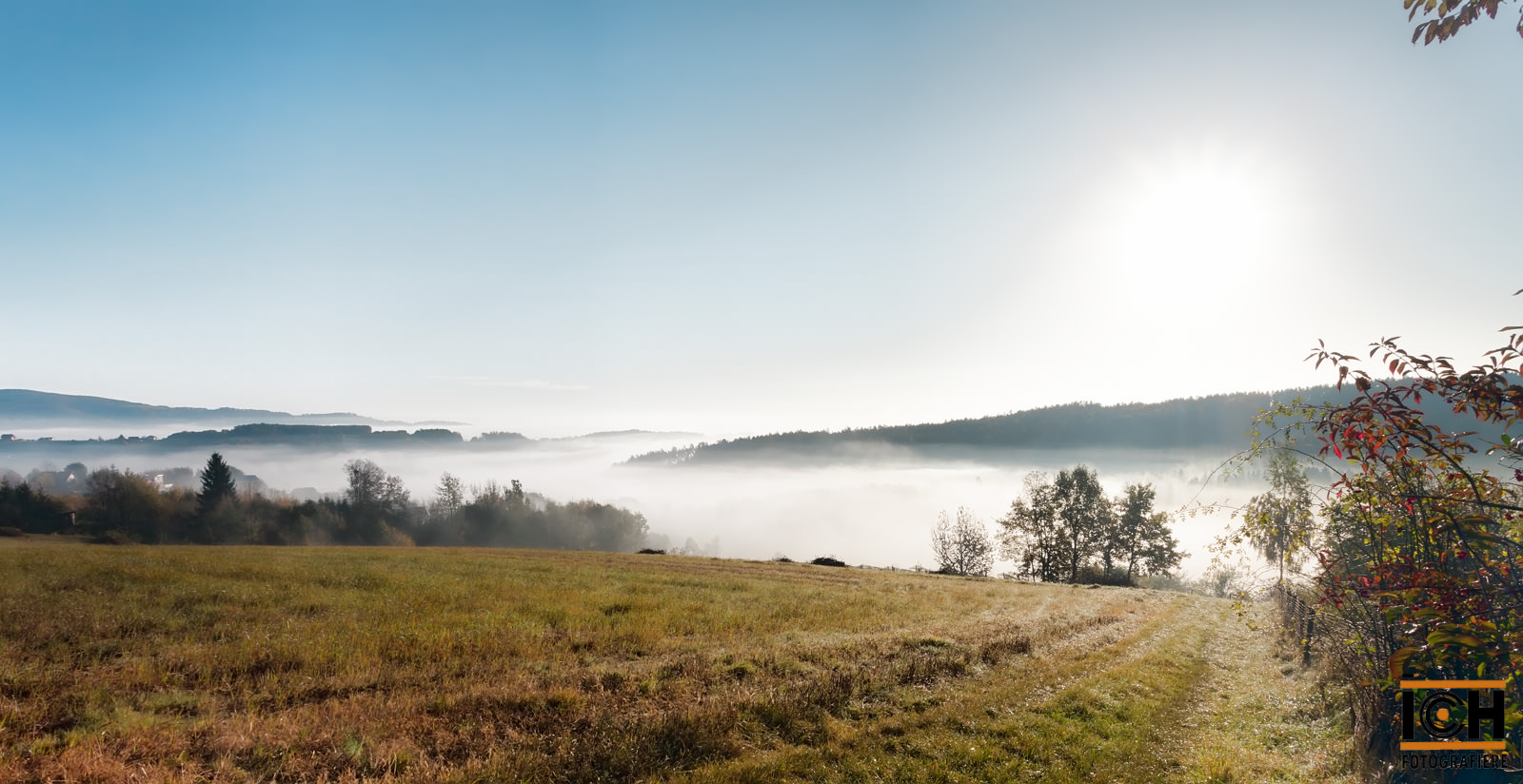 Vom Nebel ins Licht