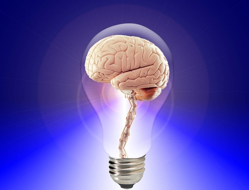 Brain in Light Bulb.jpg