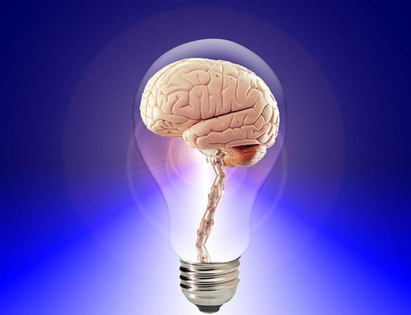 A brain inside a light bulb.