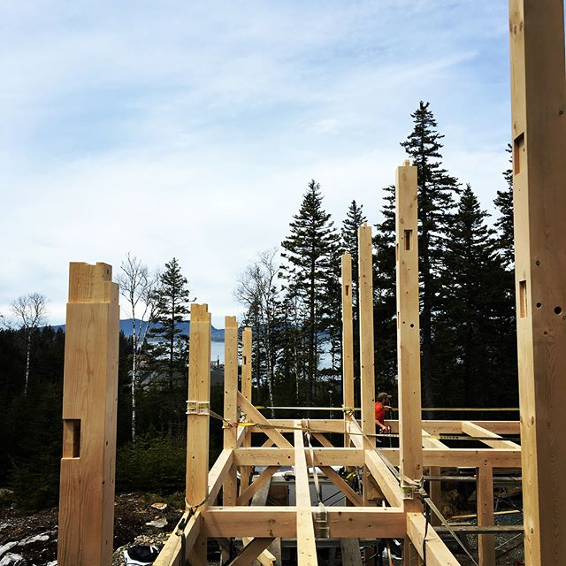 Making progress in the isles of cranberry.  5 guys 1 crane Thousands of feet of hemlock chiseled with various joinery and two very long days.