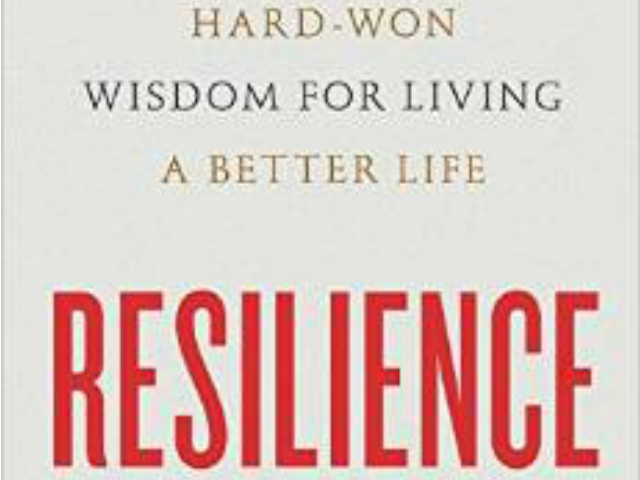 resilience-cover-640x480