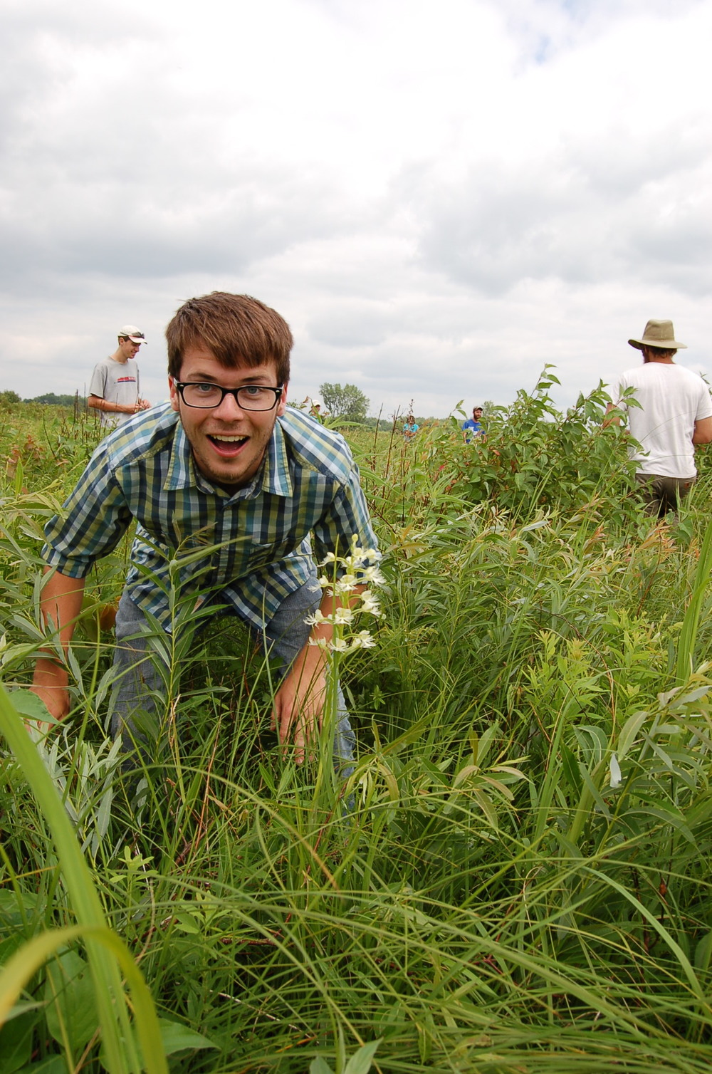 We partner with the UW Arboretum to manage Faville Prairie, where the state endangered eastern white-fringed prairie orchid has a robust population