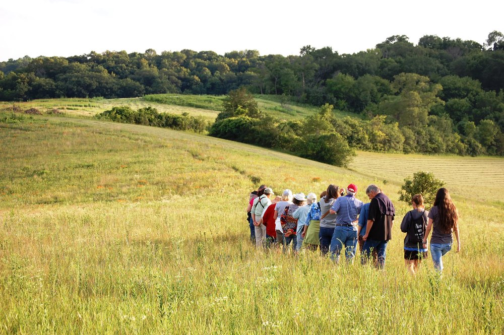 A field trip to Black Earth Prairie on a beautiful summer evening.  Photo by Matt Reetz