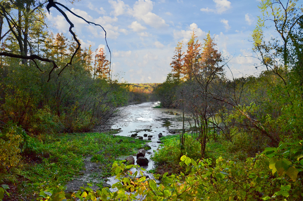 Big Springs at the UW-Madison Arboretum. Photo by Richard Hurd