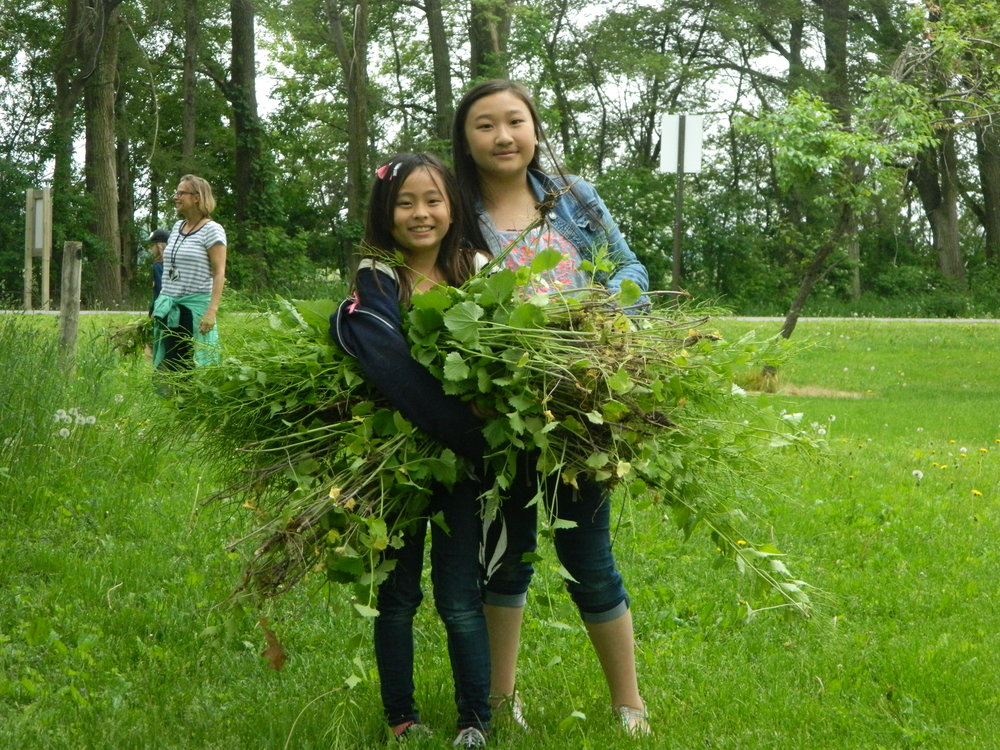 Service-learning is a great way to add to your student's knowledge about local habitats and actions we can take to help combat climate change.  Photo by Carolyn Byers