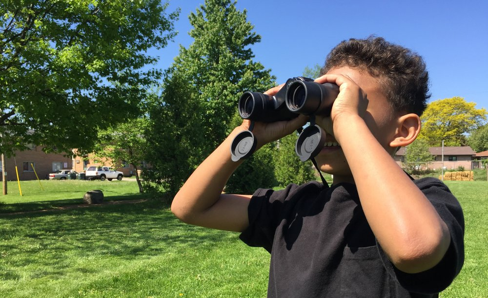 A Young Birder by Emily Meier