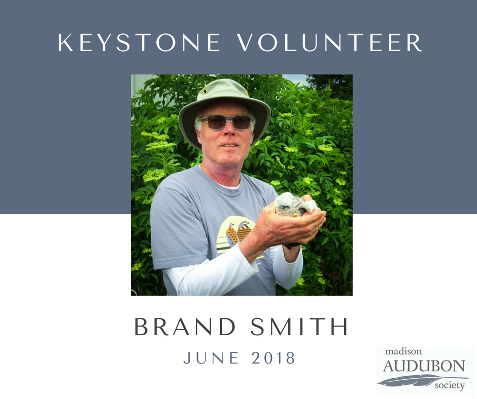 JUNE 2018 - Keystone Volunteer.png