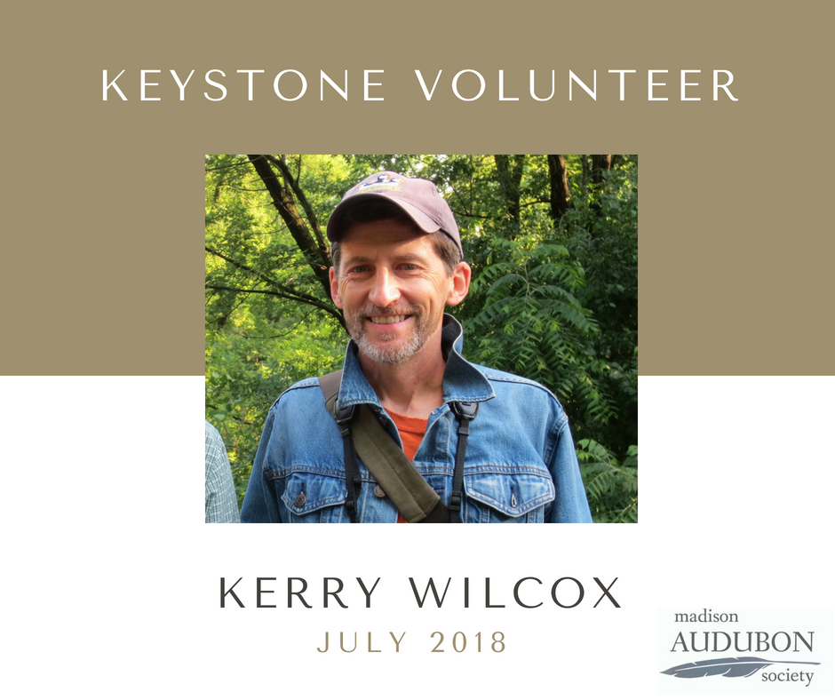 JULY 2018 - Keystone Volunteer.png