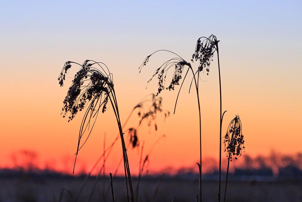 We look forward to many, many more beautiful sunrises ahead. Photo by Jeff Pieterick.