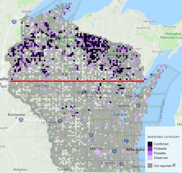 """Rough approximation of """"up north"""" based on common loon breeding range in Wisconsin. Image courtesy of eBird"""
