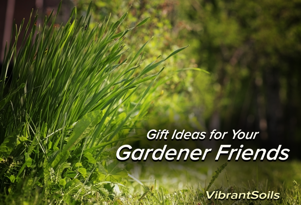 Gift Ideas for Your Vegan Friends from Vibrant Soils