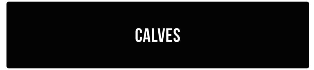 CALVESA.png
