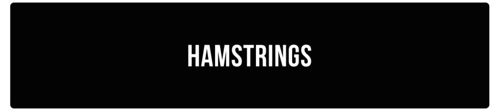 hamstrings.png