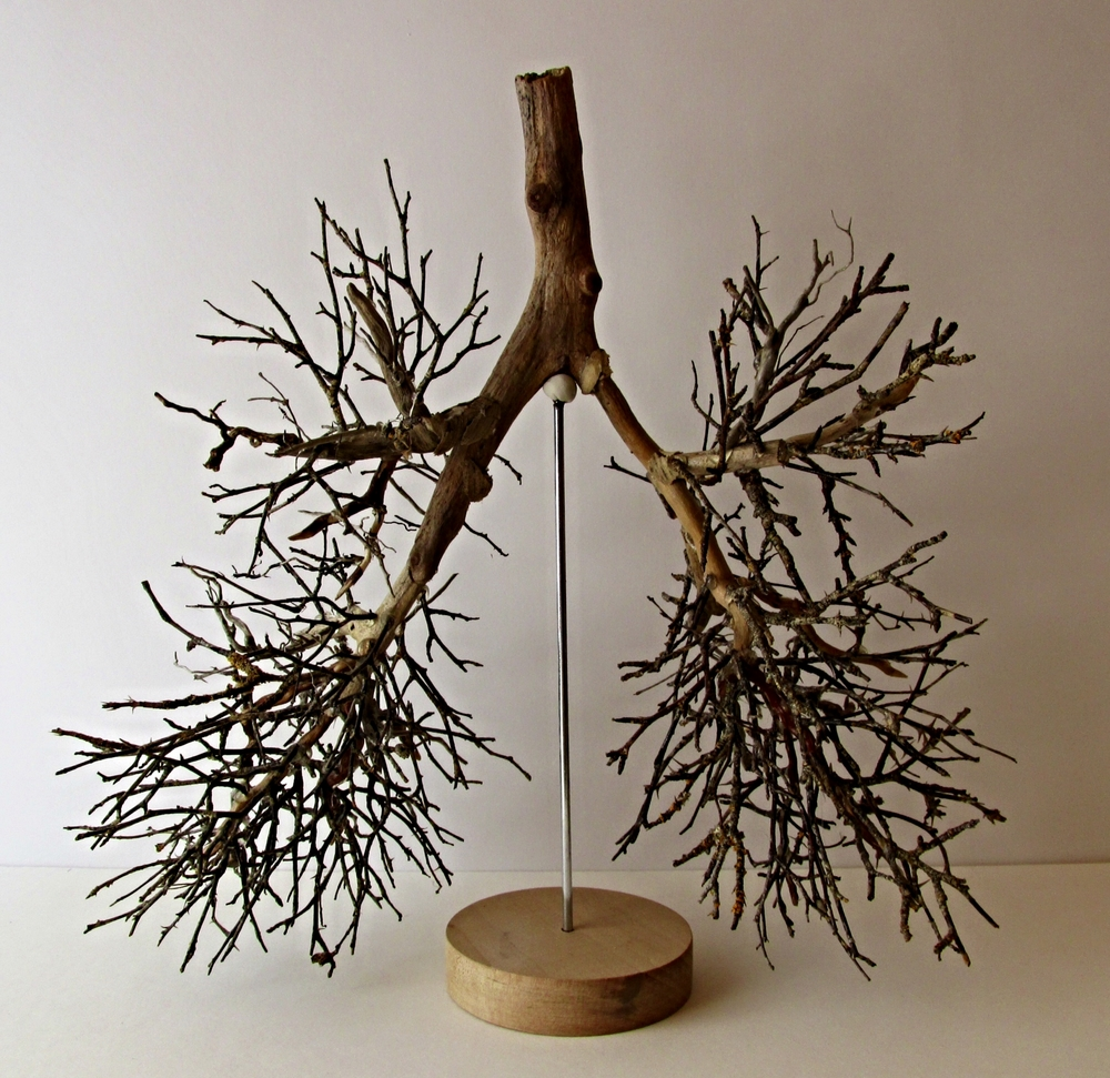 """Pinocchio's Lungs"""
