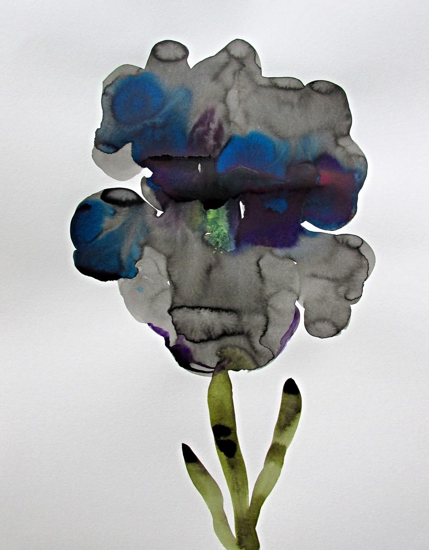 """""""Black Iris"""""""