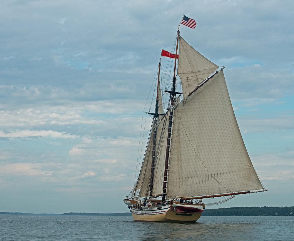 Sail-12.jpg