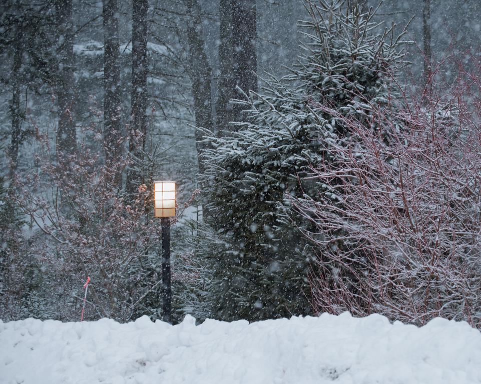 Snow 09.jpg