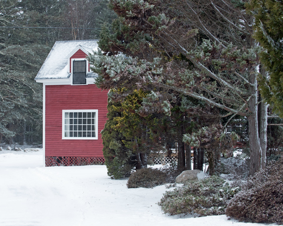 Snow 07.jpg