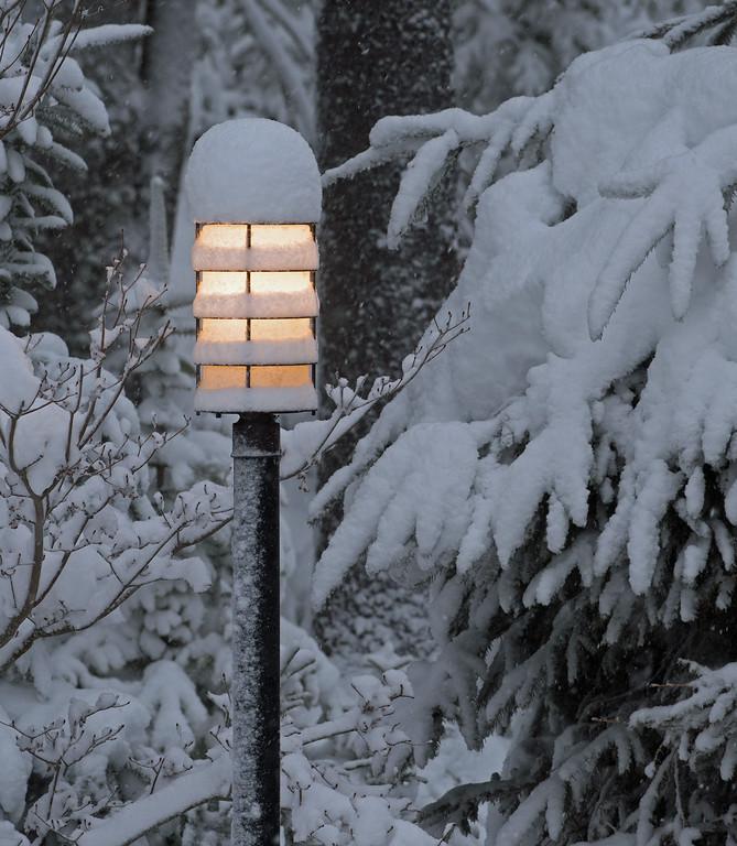 Snow 05.jpg