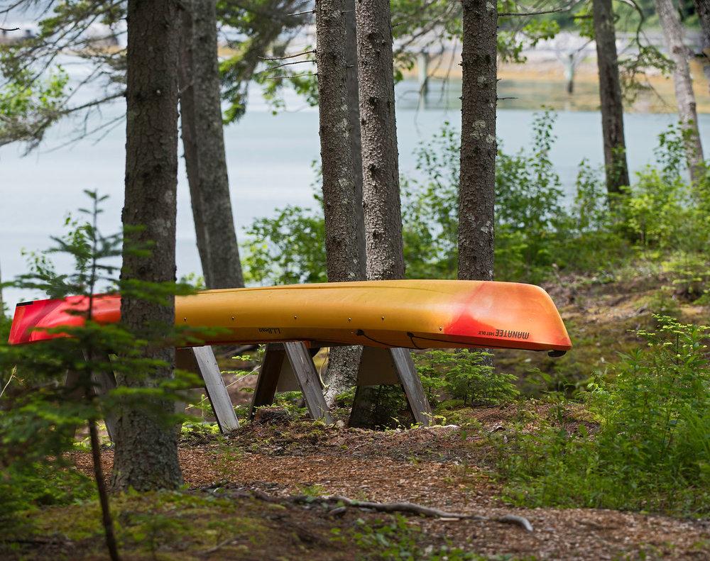 Kayak C.jpg