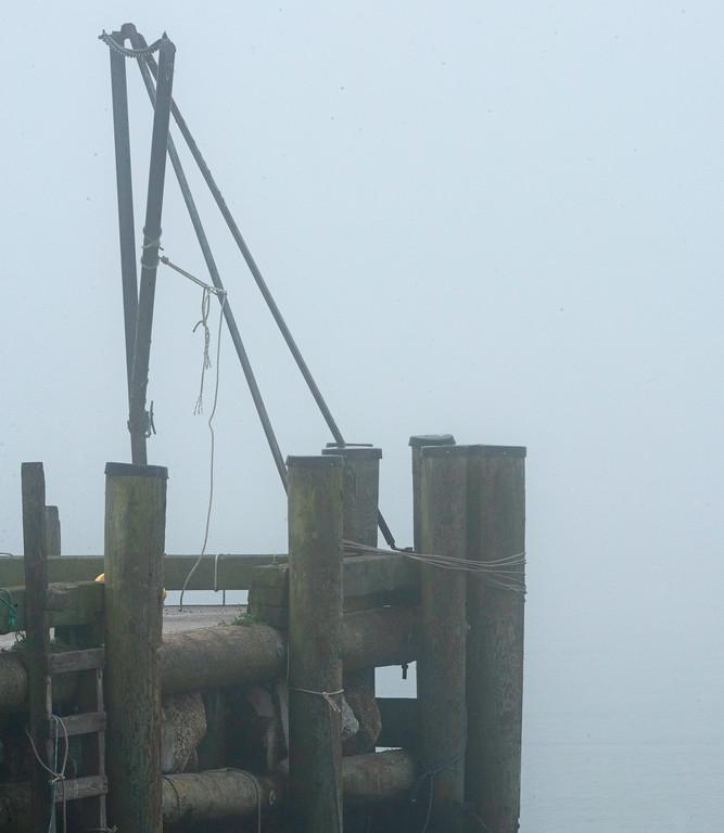 Fog 02.jpg