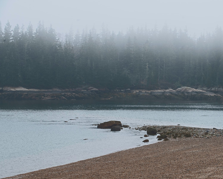 Fog 03.jpg