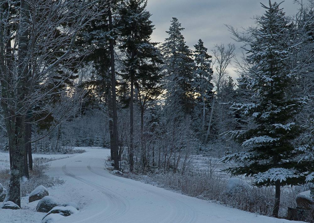 Snow 04.jpg