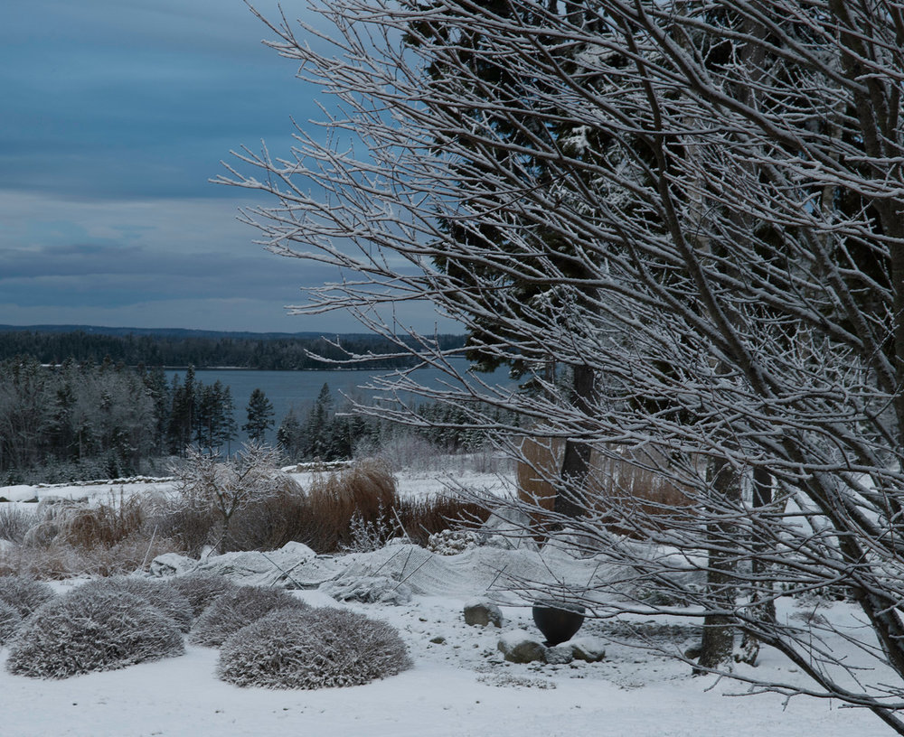 Snow 08.jpg