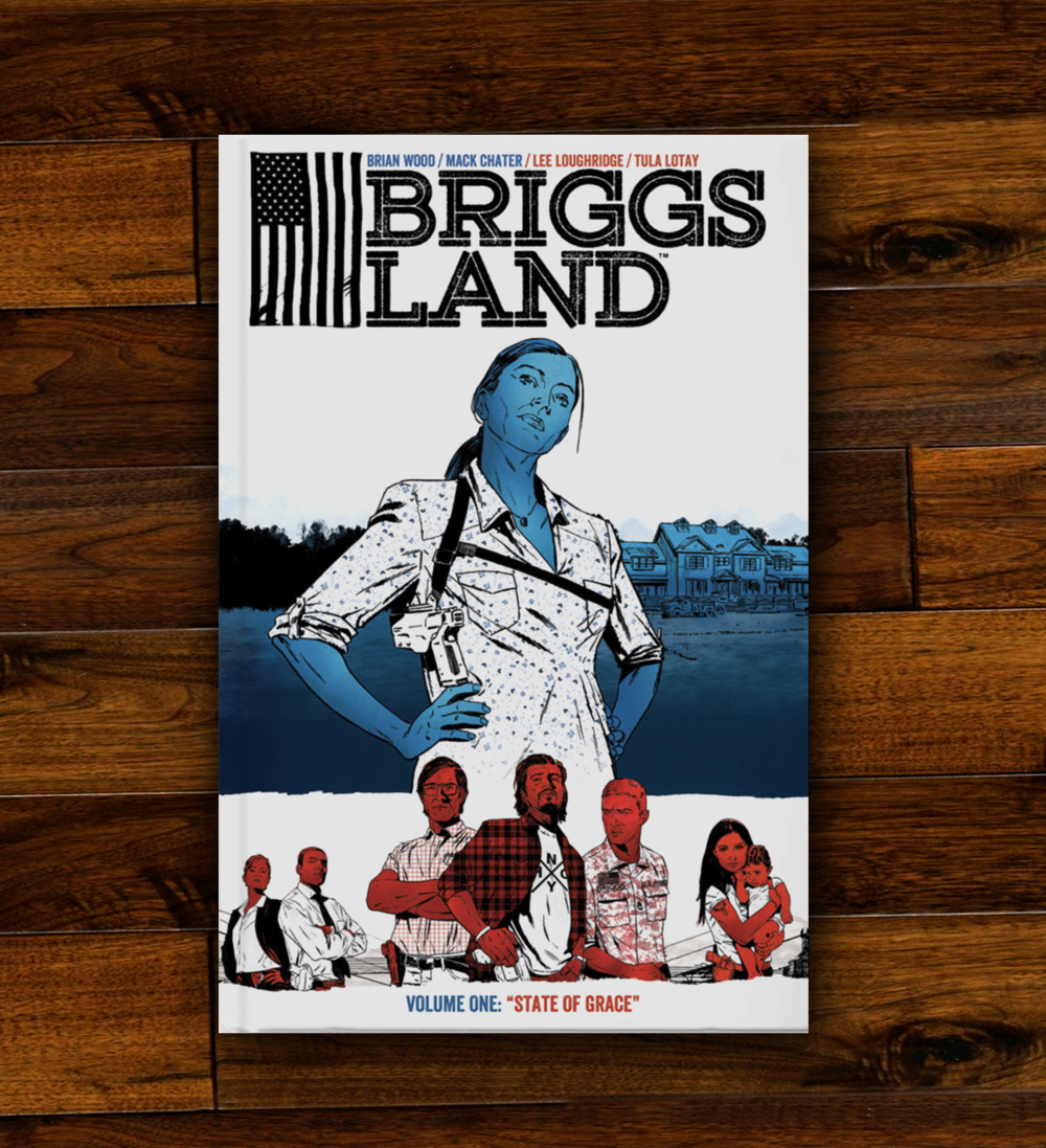 THE  BRIGGS LAND  SERIES