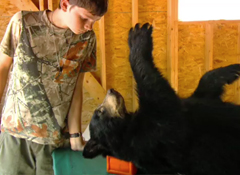 Tyler examines a Maine black bear