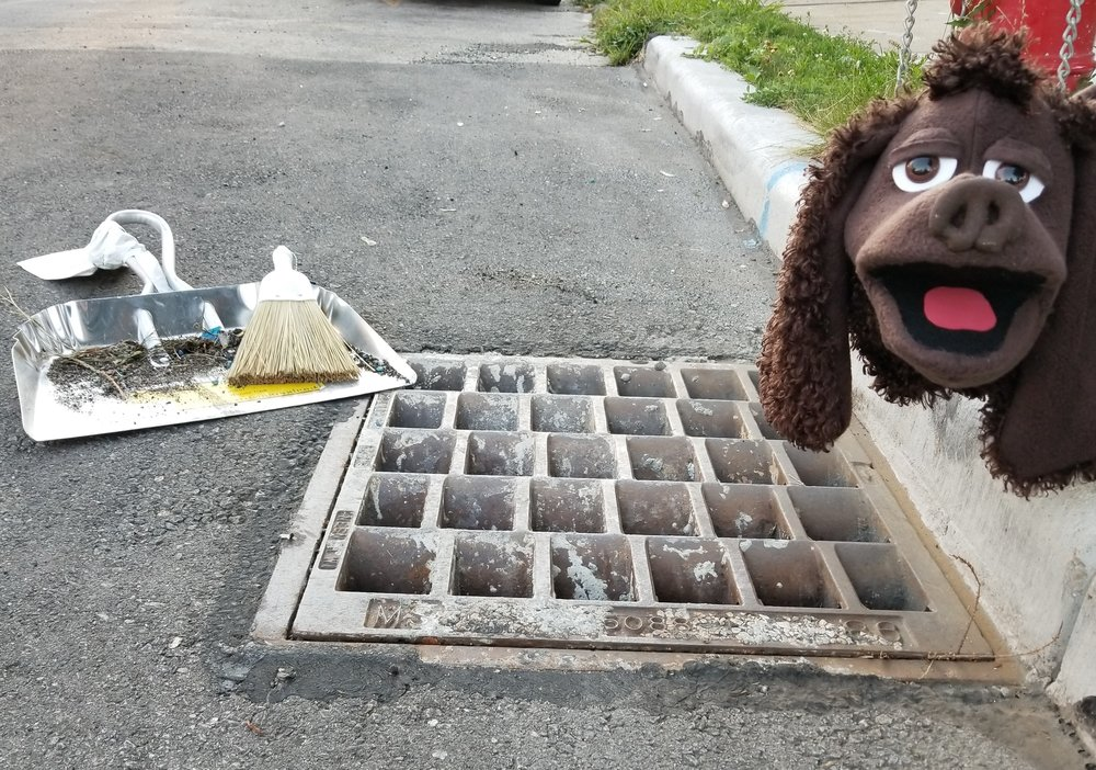 Do your part to prevent water pollution and Adopt-A-Storm Drain today! -