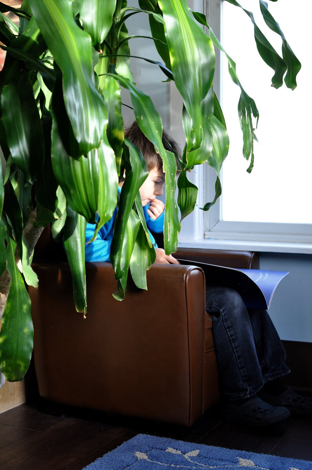 They also provide a little privacy! Here, a child reads to himself within the comfy shelter of some big green leaves.