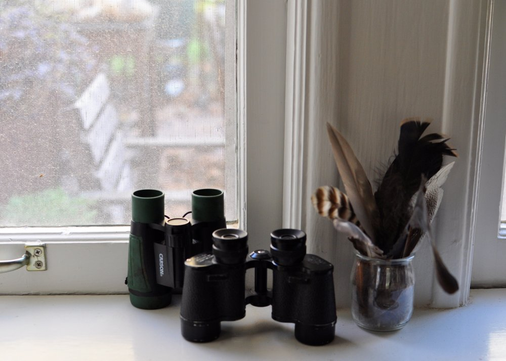 Binoculars set by a back window encourages bird watching. A guide book, some collected feathers, and other wildlife can go alongside to enhance the experience!