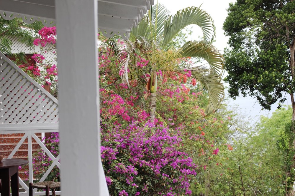 A Rainy Morning in the Caribbean | St. Lucia | Honeymoon